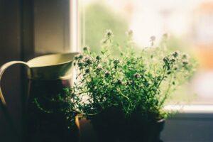 planterad-kruka